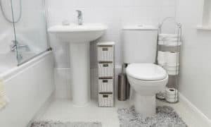 toto versus kohler toilets